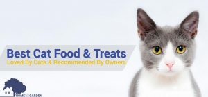 The Best Cat Food & Treats In 2018 (Dry & Wet): Loved By Cats & Recommended By Owners