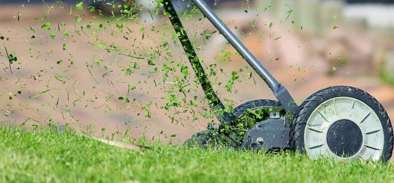 Tips For Mowing Your Lawn For a Striking Statement in The Garden