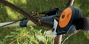 Best Tree Pruner Reviews