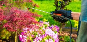 Best Bug Control Gun Reviews 21