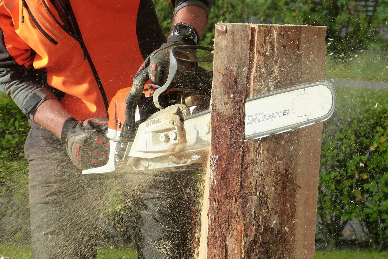 Best Cordless Chainsaw in 2021: Reviews & Buying Guide 1