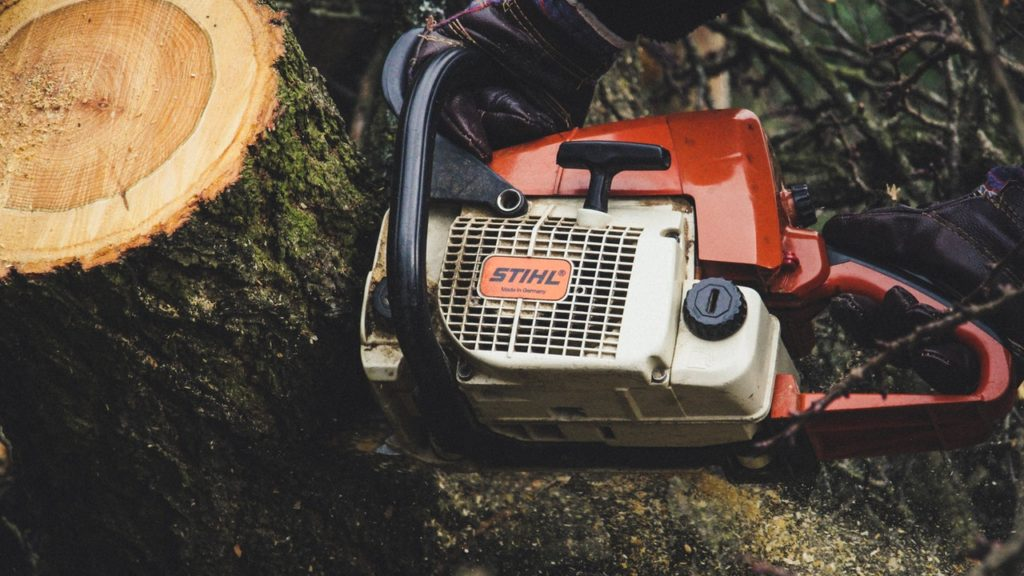 How to Use a Chainsaw to Chop Logs 2